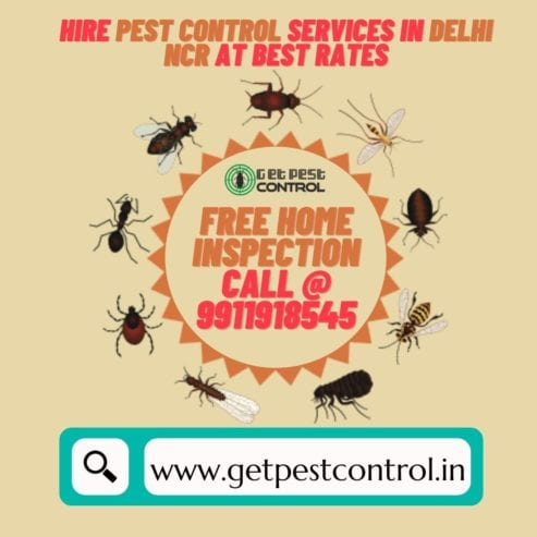 Hire-Pest-Control-Services-in-Delhi-NCR-at-Best-Rates