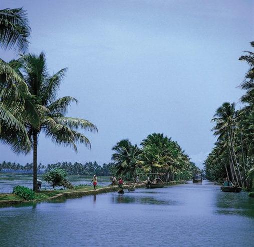 vegetation-waterways-state-Kerala-India