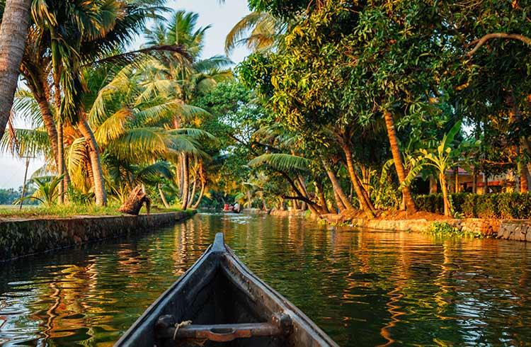 kerala-backwaters-canoe-istock